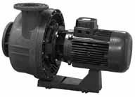 Hurlcon Astral pool pumps. KIVU Filter Pump