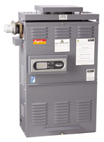 Raypak Premium 127 Gas Spa Heater Cheap Discount Sales